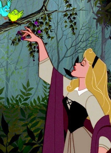 imagenes de la princesa aurora para niñas