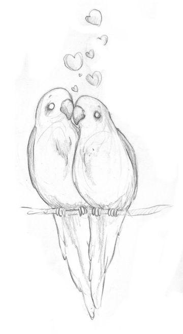 imagenes de aves para dibujar a lapiz