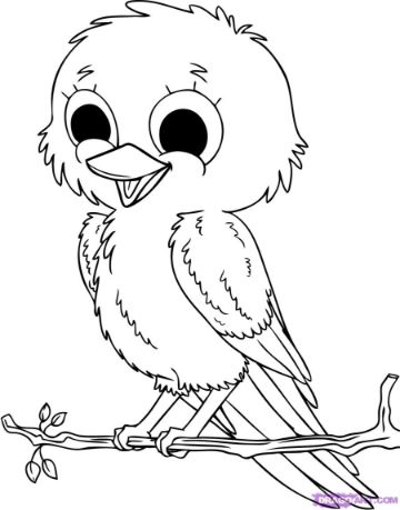 imagenes de aves para dibujar descarga
