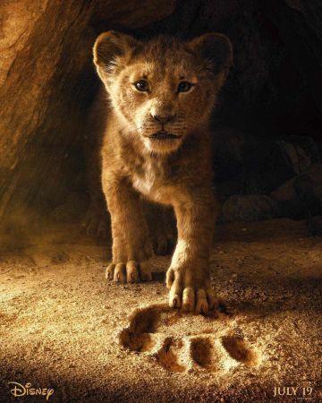 fondos de pantalla del rey leon 2019